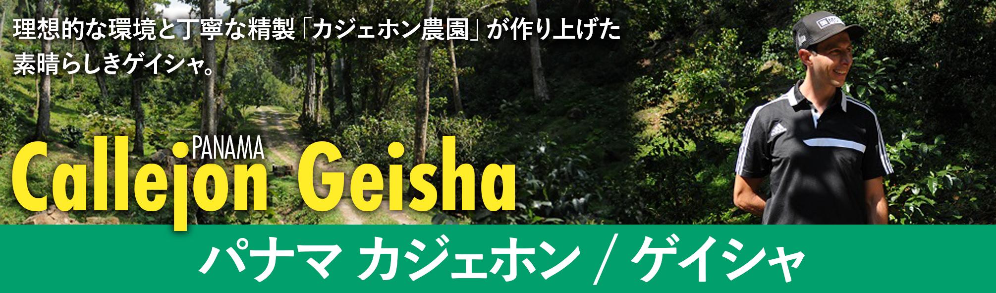 パナマ カジェホン ゲイシャ/Natural【100g】